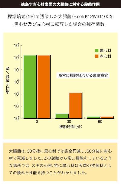 徳島すぎ心材表面の大腸菌に対する殺菌作用