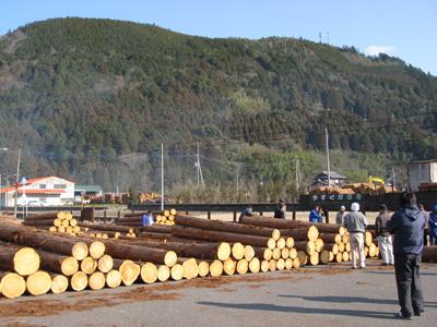 神山共販所木材買方組合