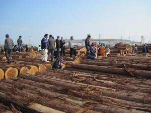 優良木材展示会