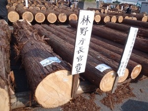 林野庁長官賞受賞木材